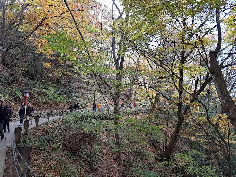 上山路之二女坂-平緩的上坡路