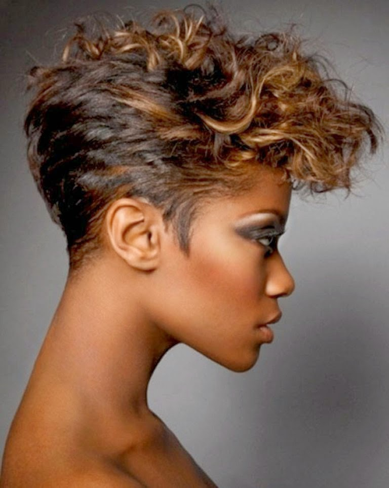 African American Hairstyles Trends and Ideas : Curly Short ...