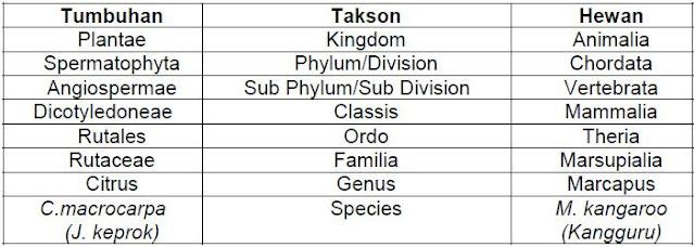 Klasifikasi tumbuhan dan hewan