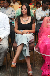 Swetha Basu in a Black Sleeveless Top Long Skirt at Mixture Potlam Movie Audio Launch 011.JPG