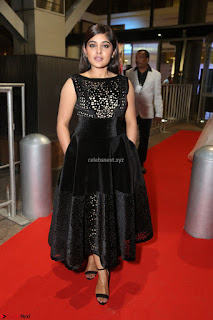 Niveda Thomas Black Sleeveless Cute Dress at 64th Jio Filmfare Awards South 2017 ~  Exclusive 108.JPG
