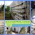 Instalasi Hidroponik Terpanjang, Cilacap - Jawa Tengah
