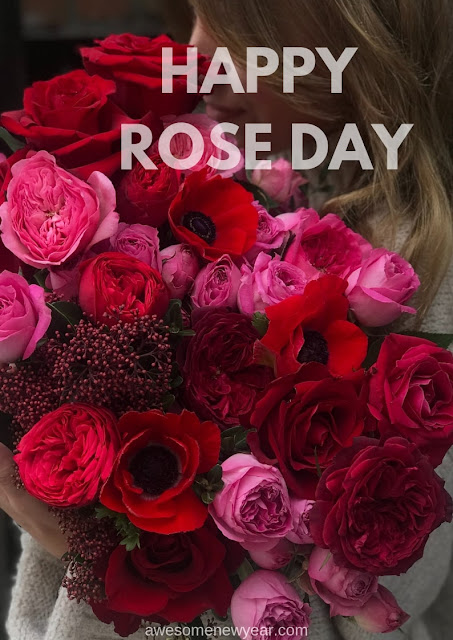 Cute Rose Day Images