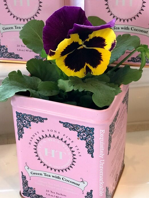Upcycled Tea Tins As Indoor Flower Pots