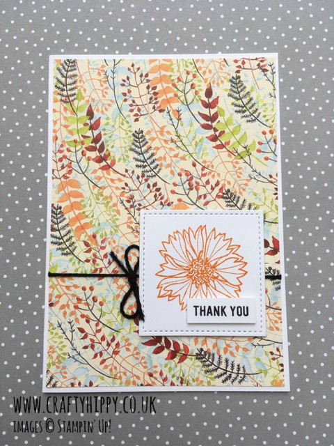 Create this fab greetings card using the Touches of Texture stamp set by Stampin' Up!