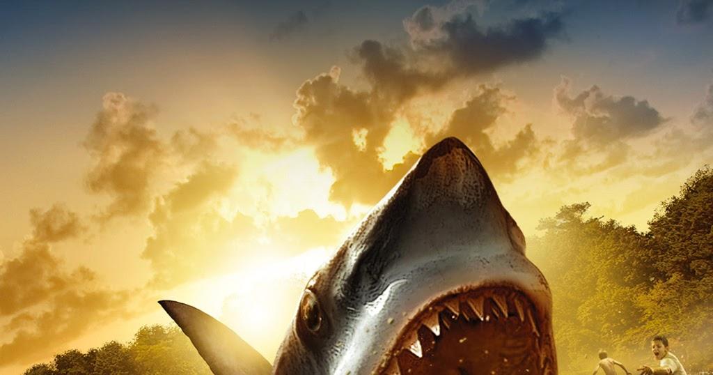 Atak W Nowej Zelandii Hd: Shark Attack Wallpaper Hd