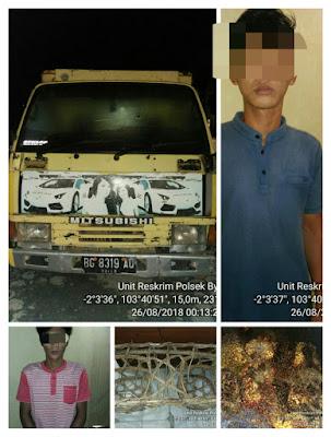 Polisi Gagalkan Pencurian 2 Ton Sawit