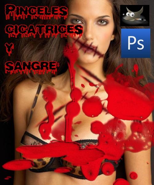 Pinceles cicatrices y sangre para Photoshop o GIMP