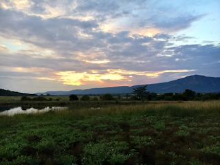 entabeni, safari, ilta, etelä-afrikka, riitta reissaa