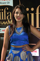 Madhu Shalini Looks Super Cute Slim trim Blue Choli Ghagra IIFA Utsavam Awards 40.JPG
