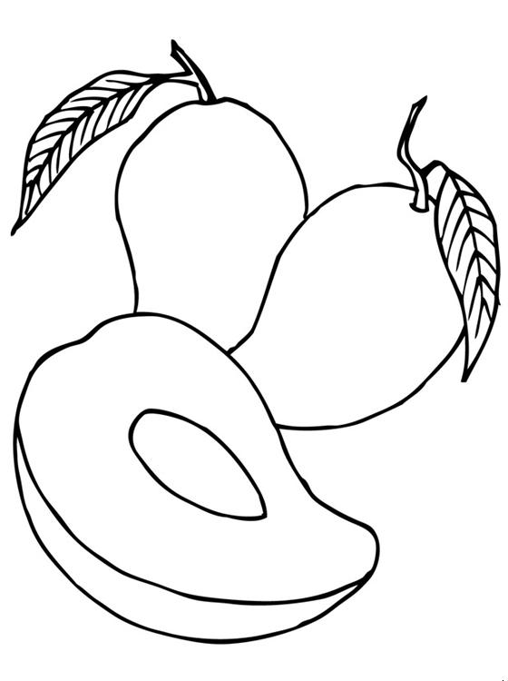 Mango Clipart Coloring Page
