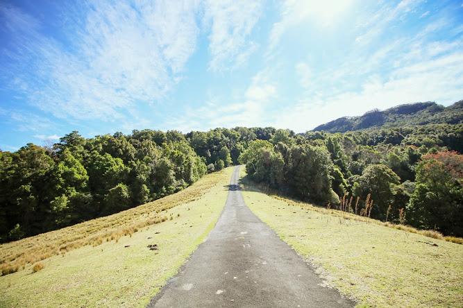 Hoddles Road Track Farmland