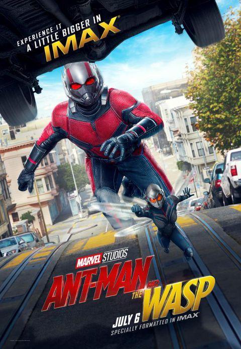 Ant-Man y la Avispa [Español Latino][HD][MEGA]