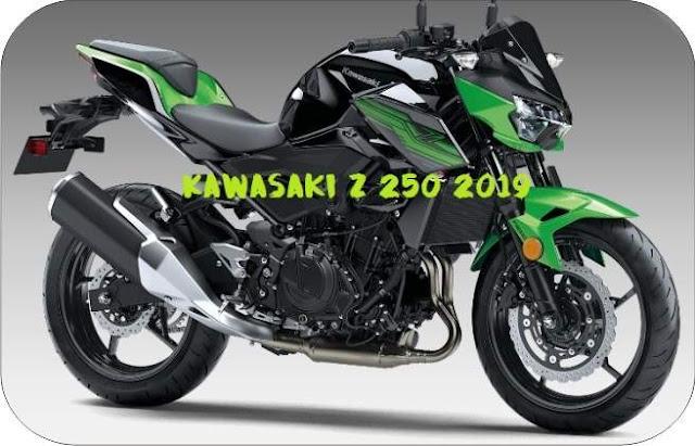 All New Kawasaki Z250 tahun 2019 Hijau Hitam