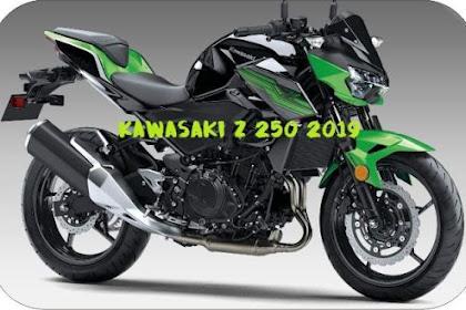 Benarkah All New Kawasaki Z250 Terbaru di Luncurkan Kawasaki Senin Besok?