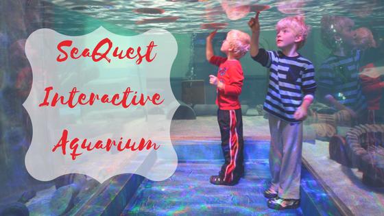 Utah Aquarium