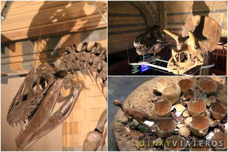 Museo de Historia Natural de Londres. Dinosaurios