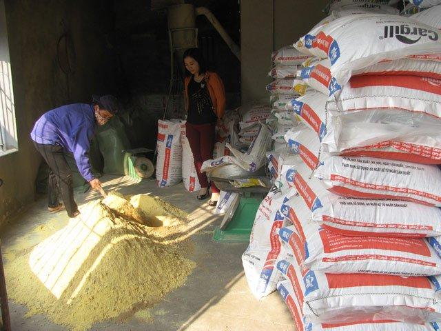 Một hộ chăn nuôi đang trộn kháng sinh vào TĂCN