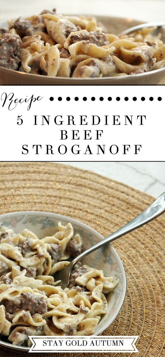 Best 5 ingredient beef stroganoff recipe