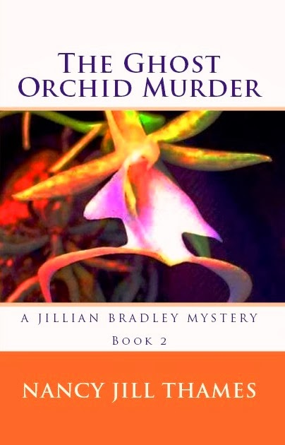 http://www.amazon.com/Jillian-Bradley-Mysteries-Mystery-ebook/dp/B004CLYG9Y
