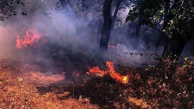 Πολύ μεγάλος κίνδυνος για φωτιά στην Αργολίδα και την Παρασκευή 24 Ιουλίου