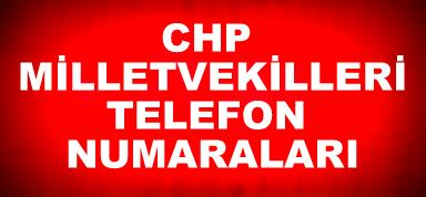 Cep telefonu, Milletvekili, TBMM Telefon