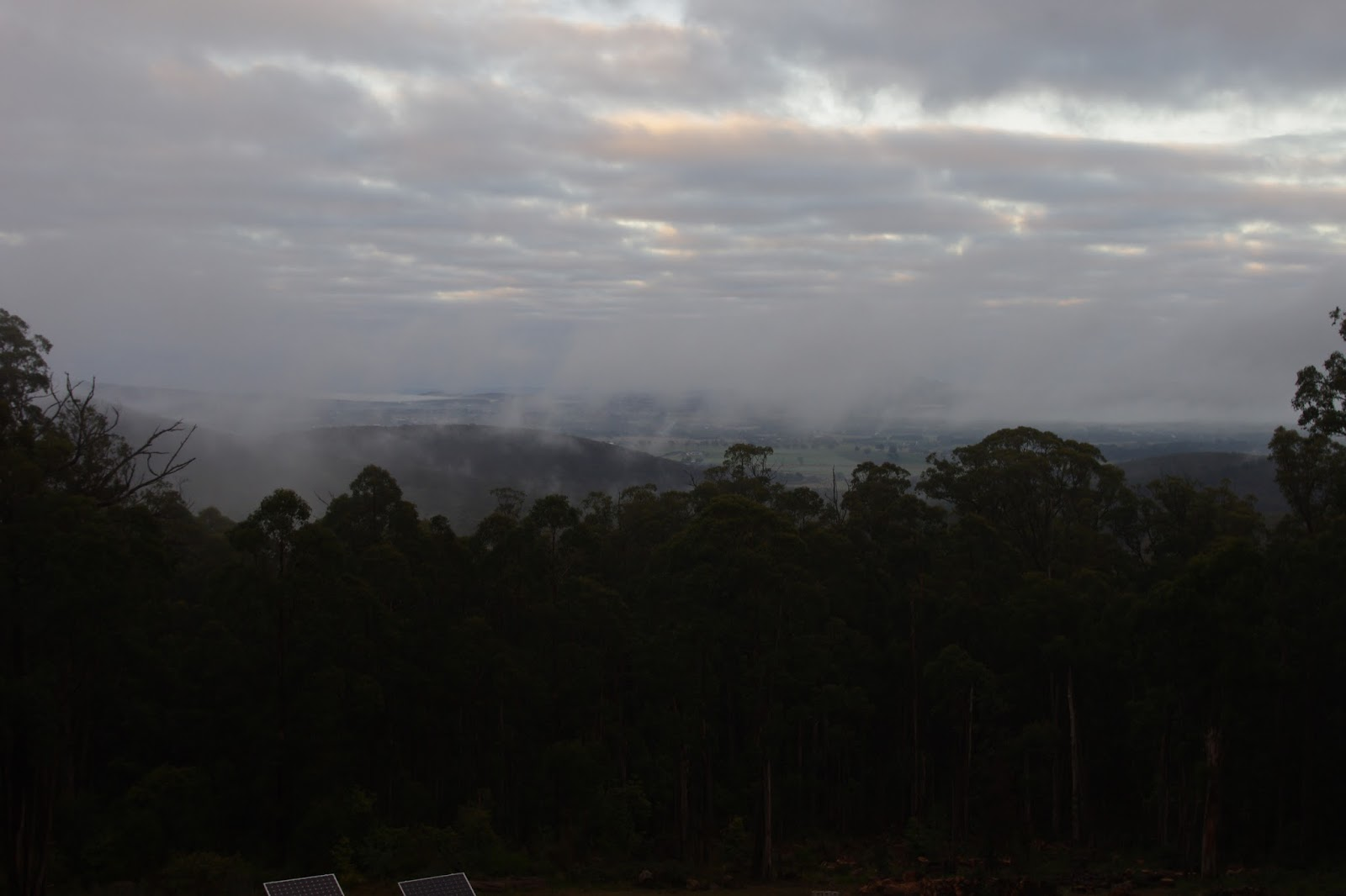 Mist rises over the valley as humidity is well over 90%