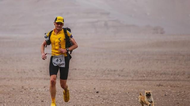 Corredor de maratón encuentra a un perro en el desierto