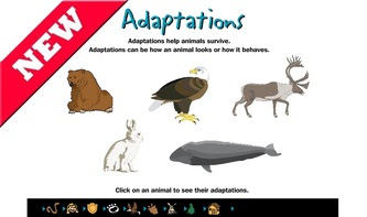http://interactivesites.weebly.com/animal-adaptations.html