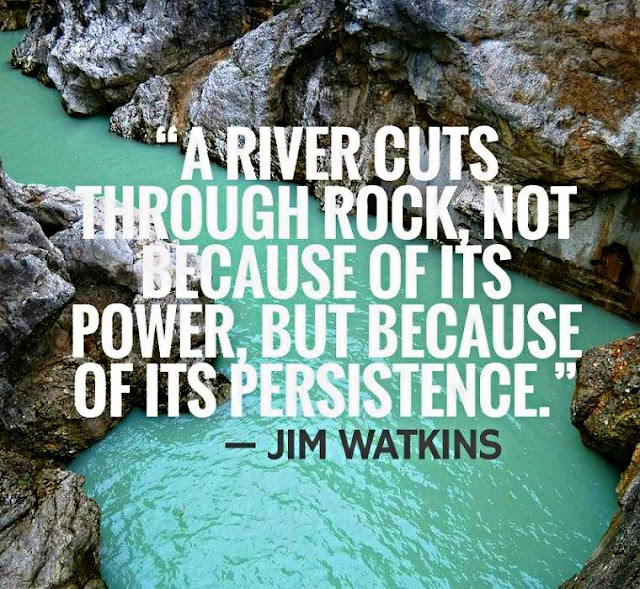 A river cuts through rock, not because of it's power, but because of its persistence