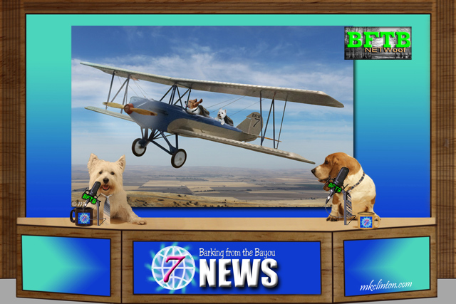 BFTB NETWoof News team with photo of them flying plane behind