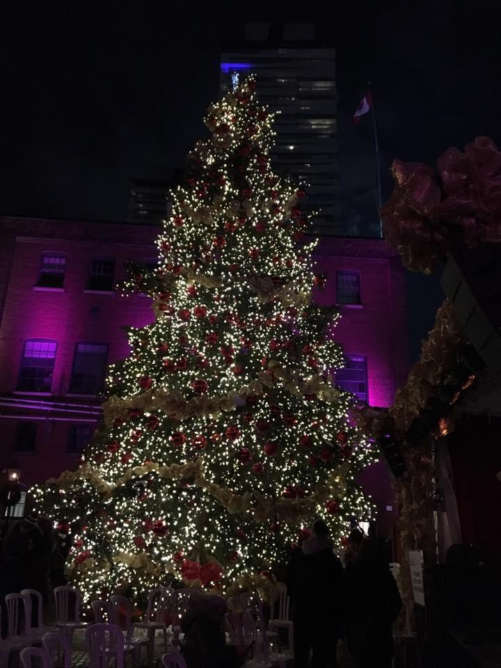 Toronto Christmas Activities