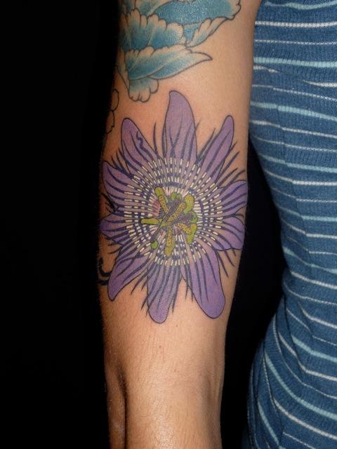 3da9c11d8 TRUE NATURE TATTOO: Passion Flower