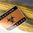 "800 Scientists Demand Global GMO ""Experiment"" End"