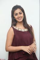Nikki Galrani in a Brown Shining Sleeveless Gown at Nakshatram music launch ~  Exclusive 094.JPG