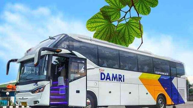 Damri Jogja Lampung