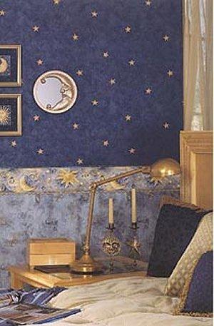 Dark Cozy Girl City Wallpaper Decorating Theme Bedrooms Maries Manor Celestial Moon