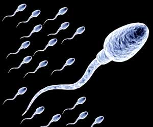 Some Facts Conception Sperm