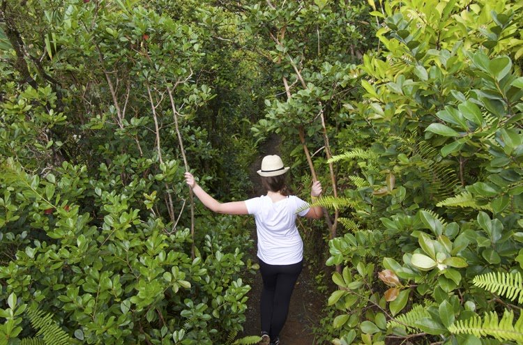 A Day at Kualoa Ranch 4 // Almost Chic