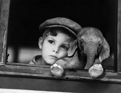 Vintage Photo Boy and Baby Elephant - Friday Frivolity Everything Elephants -- funny memes and gorgeous vintage wildlife photography!  Plus Nessie, the Loch Ness monster, creeps in there too.  Did you know that some people believe that the Nessie photograph is of an elephant swimming in the loch??  Plus, the link-up for everything fun, funny, happy and hopeful, where hosts comment, pin, tweet, and want to get to know you!  Join the linky blog party!  #FridayFrivolity