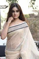 Sony Charishta in Brown saree Cute Beauty   IMG 3591 1600x1067.JPG
