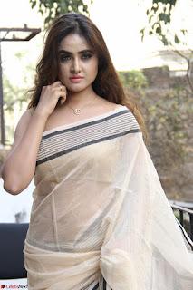 Sony Charishta in Brown saree Cute Beauty   IMG 3591 1600x1067.JPG