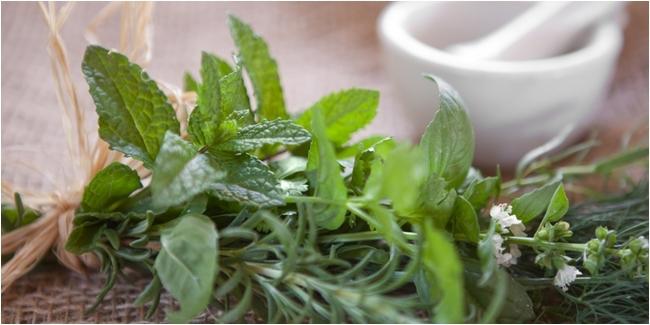4 Herbal Ini Dipercaya Bermanfaat Sebagai Pencegah Kanker