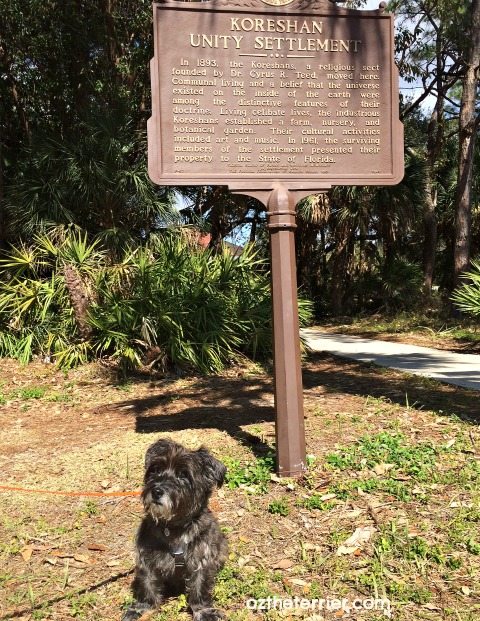 Oz the Terrier visits dog-friendly Koreshan State Historic Site, Florida