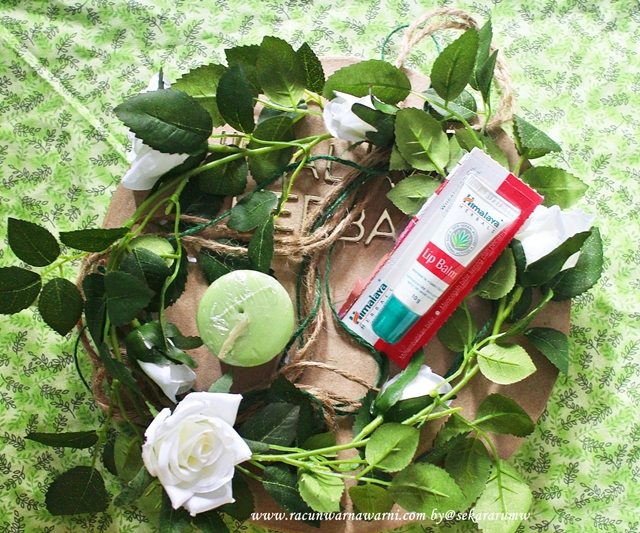 Review Himalaya Lip Balm