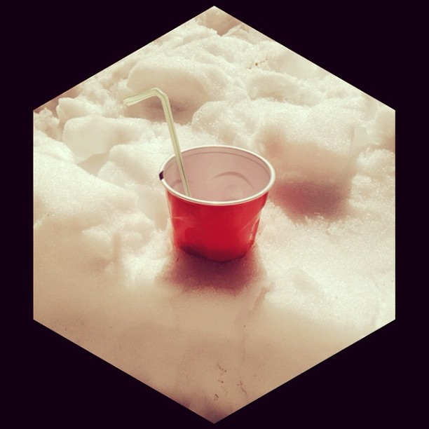 cup chilling in the snow