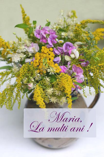 #maria #lamultiani #sfantamarie