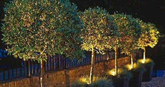 Illuminazione a led per giardini e aree verdi garden for Mondo convenienza illuminazione