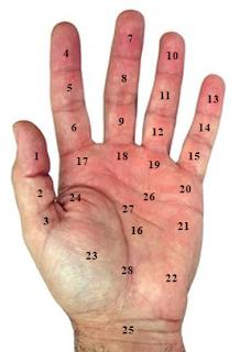 Nốt ruồi ở lòng bàn tay nam giới và nữ giới