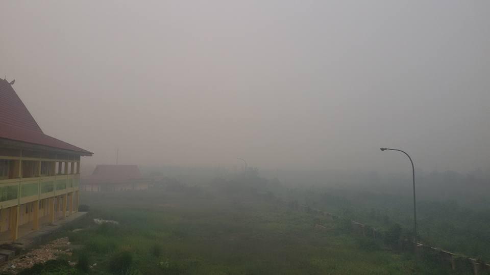 Efek Ruma Kaca Akibat Pemanasan Global Dan Pembakaran Hutan Rumah